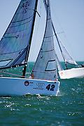 Melges 20 Class racing during the Bacardi Miami Sailing Week regatta, day 6.