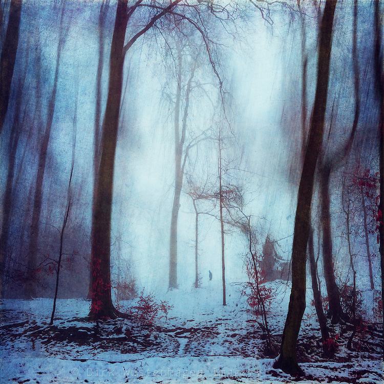 Lonely walker in a wintry park - manipulated and texturized photograph<br /> <br /> License: http://www.trevillion.com/search/preview/eerie-snow-covered-forest/0_00216434.html
