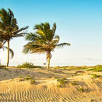 La Boca es una playa se encuentra ubicada en Cabarete, que es utilizado principalmente por locales y no muy bien conocido por los turistas. El camino a La Boca consiste en un camino de arena áspera y estrecha por cerca de tres millas. Es el lugar donde el río desemboca en el mar y es una de las playas más aisladas y privadas de la República Dominicana. El lugar es ideal para la practica de Kitesurf o Kitesurfing. La Boca is a beach located in Cabarete, which is used mainly by locals and not very well known by tourists. The road to La Boca consists of a rough and narrow sand road for about three miles. It is the place where the river empties into the sea and is one of the most isolated and private beaches of the Dominican Republic. The place is ideal for practicing Kitesurf or Kitesurfing.