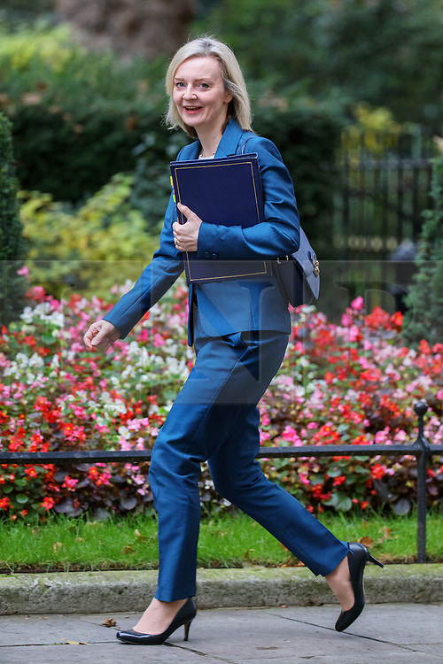 © Licensed to London News Pictures. 18/10/2016. London, UK. Justice Secretary LIZ TRUSS attends a cabinet meeting in Downing Street on Tuesday, 18 October 2016. Photo credit: Tolga Akmen/LNP