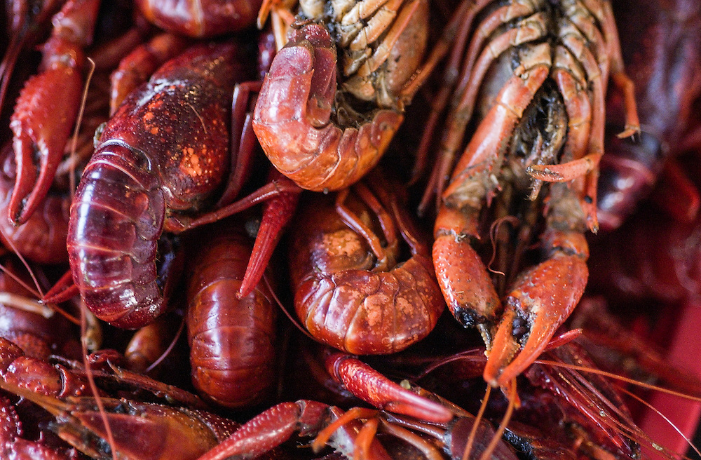 This is crawfish in New Orleans. ©Kathy Anderson, All Rights Reserved
