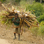 Konso Tribe, Omo River Valley, South Ethiopia, Africa