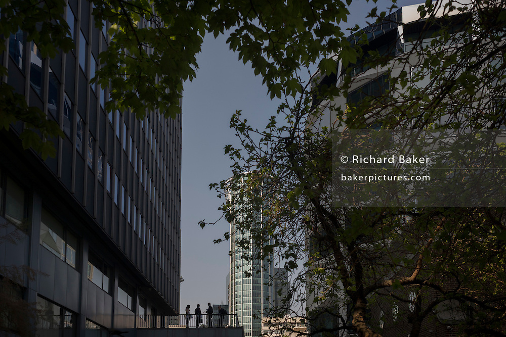 City workers stand outside on a balcony surrounded by tall office buildings and summer urban trees.