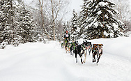 Musher Jason Dunlap competing in the Fur Rendezvous World Sled Dog Championships at Campbell Airstrip in Anchorage in Southcentral Alaska. Winter. Afternoon.