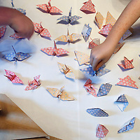 Edinburgh Children Fold Words they've never been able to say before...Pictured: Children from Liberton Primary School, Edinburgh Folding Words at a workshop run as part of the Edinburgh International Festival's Bank of Scotland Connecting to Culture programme...The group of 11 year-olds are making origami cranes from a special letter they have each written about something they have always wished to express, in a project called Folding Words taking place at The Hub, Edinburgh...The letters range widely in subject matter - from deeply personal and moving feelings about bereavement to memories, dreams and wishes for the future, and favourite holidays...The origami cranes will be installed in the Temperate foyer and walkway at the Royal Botanic Garden Edinburgh between 14 August and 6 September. Visitors to the exhibition will be encouraged to say something they have always wanted to say by writing their own letters in the contemplative settings of the gardens. ..The Edinburgh International Festival's Bank of Scotland Connecting to Culture programme enters its second year in 2009 with a year-round schedule of theatre, dance, music and visual arts projects throughout the year set to reach over 1100 pupils in 40 Edinburgh schools...In addition to working with other school pupils, site specific projects at the Royal Botanic Garden Edinburgh and community centres offer over 10,000 adults the opportunity to take part in the Bank of Scotland Connecting to Culture series in 2009...Picture © Drew Farrell    Tel :  07721-735041.If you require any more information please contact Brian Maycock Press Office, Edinburgh International Festival Tel : 0131-473-2020..Note to Editors:  This image is free to be used editorially in the promotion of EIF. Without prejudice ALL other licences without prior consent will be deemed a breach of copyright under the 1988. Copyright Design and Patents Act  and will be subject to payment or legal action, where appropriate......