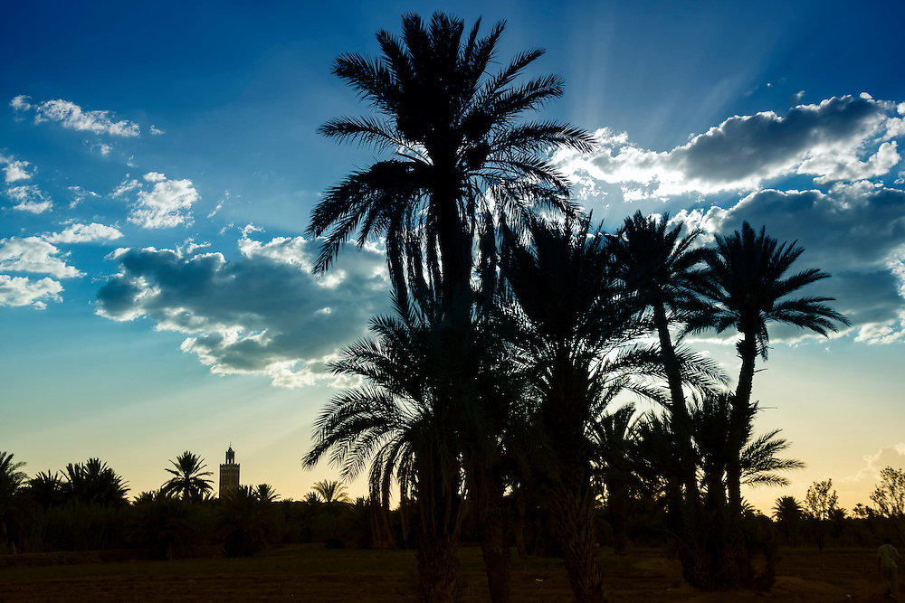 Sunset with mosque and date palms in Ouarzazate, Morocco.