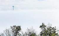 A fog bank obscures downtown Seattle and the Space Needle sticks up through the fog, Washington USA