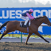 Palace Moon and Jim Crowley winning the 2.45 race