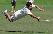 Polar Bear Jacob Serrano, 25, dives for the frisbee during the Polar Bears' 15-9 victory over the Blackbird at the 2011 USA Ultimate Northern California Club Mixed Sectionals on the South Intramural Field at Stanford Unviersity in Palo Alto, Calif., on Sunday, Sept. 18, 2011.