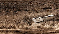 Lone dinghie in the salt marsh Powder Point Ave Duxbury, Massachusetts