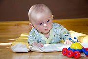 Baby Boy Lying on Tummy Playing with Colourful Red Blue and Yellow Toy Spider