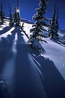 Scenic of snowy scene near Lake Tahoe, CA