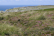 West side of Lundy, Devon