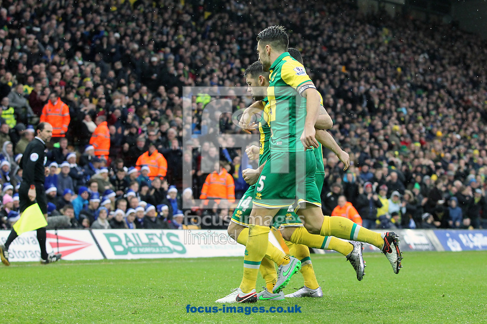 Wes Hoolahan of Norwich celebrates scoring his sides equalising goalduring the Barclays Premier League match at Carrow Road, Norwich<br /> Picture by Paul Chesterton/Focus Images Ltd +44 7904 640267<br /> 12/12/2015