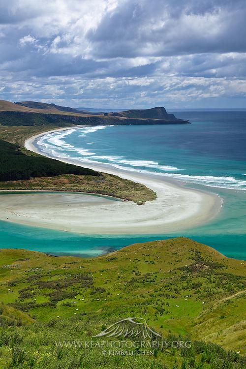 Victory Beach along the Wickliffe Bay, Otago Peninsula