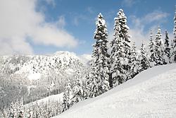 North America, United States, Washington,  Crystal Mountain Ski Resort
