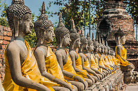 aligned buddha statues at Wat Yai Chai Mongkhon Ayutthaya Bangkok Thailand
