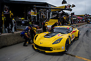 October 1- 3, 2015: Road Atlanta, Petit Le Mans 2015 - Oliver Gavin, Tommy Milner,USA Corvette Racing C7.R GTLM pitstop
