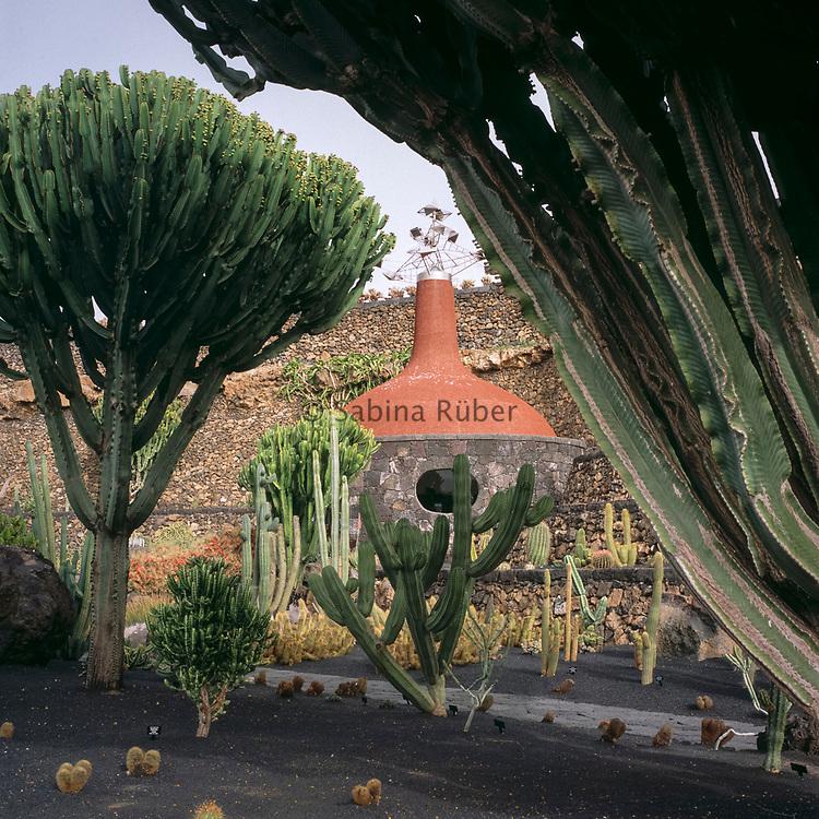 Euphorbia candelabrum, Jardin de Cactus, Guatiza, Lanzarote, Canary Islands