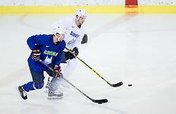 Ales Music during practice session of Slovenian Ice Hockey National Team at training camp, on February 8th, 2016 in Ledna dvorana, Bled, Slovenia. Photo by Vid Ponikvar / Sportida