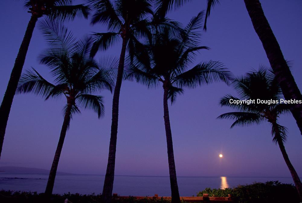 Moonset, Maui, Hawaii, USA<br />
