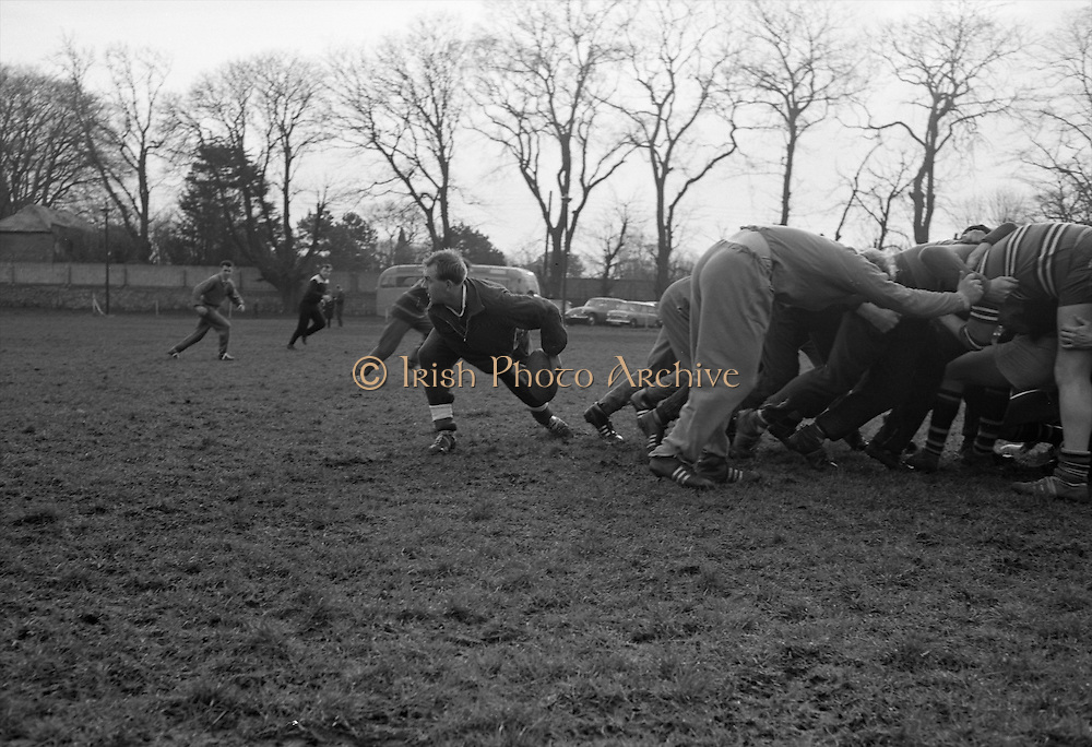Welsh Captain Rowlands gets the ball away from scrum,..Irish Rugby Football Union, Ireland v Wales, Five Nations, Welsh Rugby team pracrice at Palmerstown, Dublin, Ireland, Friday 6th March, 1964,.6.3.1964, 3.6.1964,..Referee- A C Luff, Rugby Football Union, ..Score- Ireland 6 - 15 Wales, ..Welsh Team, ..G T R Hodgson, Wearing number 15 Welsh jersey, Full Back, Neath Rugby Football Club, Neath, Wales,..P Rees, Wearing number 11 Welsh jersey, Left Wing, Newport Rugby Football Club, Newport, Wales, ..K Bradshaw, Wearing number 12 Welsh jersey, Left Centre, Bridgend Rugby Football Club, Bridgend, South Wales,..J Dawes, Wearing number 13 Welsh jersey, Right Centre, London Welsh Rugby Football Club, Surrey, England, ..S J Watkins, Wearing number 14 Welsh jersey, Right Wing, Newport Rugby Football Club, Newport, Wales, ..D Watkins, Wearing number 10 Welsh jersey, Stand Off, Newport Rugby Football Club, Newport, Wales, ..D C T Rowlands, Wearing number 9 Welsh jersey, Captain of the Welsh team, Scrum Half, Pontypool Rugby Football Club, Pontypool, Wales,..D Williams, Wearing number 1 Welsh jersey, Forward, Ebbw Vale Rugby Football Club, Gwent, South Wales,..N R Gale, Wearing number 2 Welsh jersey, Forward, Llanelly Rugby Football Club, Llanelly, Wales,..L J Cunningham, Wearing number 3 Welsh jersey, Forward, Aberavon Rugby Football Club, Port Talbot, Wales, ..B E V Price, Wearing number 4 Welsh jersey, Forward, Newport Rugby Football Club, Newport, Wales, ..B E Thomas, Wearing number 5 Welsh jersey, Forward, Neath Rugby Football Club, Neath, Wales,..G J Prothero, Wearing number 6 Welsh jersey, Forward, Bridgend Rugby Football Club, Bridgend, South Wales,..A Pask, Wearing number 8 Welsh jersey, Forward, Abertillery Rugby Football Club, Gwent, South Wales, ..D J Hayward, Wearing number 7 Welsh jersey, Forward, Cardiff Rugby Football Club, Cardiff, Wales,.