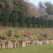 Gardens and Croquet Lawn, Devon