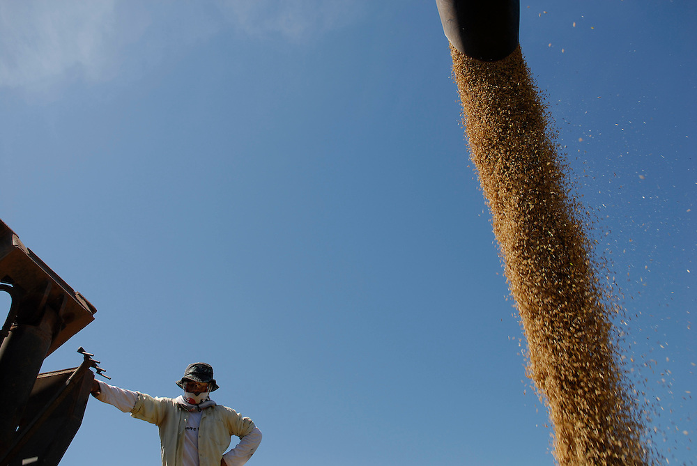 Worker at a rice farm in the brazilian state of Tucatins, 2006