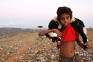 A young shepherd carrying a young goat to his house for the dinner. There are approximately 70000 goats on the island, present almost everywhere, and most of the times the only fortune each family possess. Socotra island, Yemen. <br /> Dormant and indecisive, the island of Socotra has floated for millions of years between Africa and the Arabian peninsula. Such isolation makes it the ideal sanctuary for vegetation that has endured since the Tertiary period (65-2 million years ago), and a peaceful refuge for a vibrant aboriginal culture, an island shrouded in mystery and dark secrets.