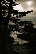 The cove of the Lone Cypress at Pebble Beach