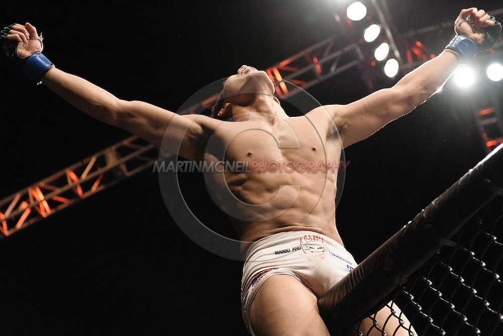 """LAS VEGAS, NEVADA, MAY 24, 2008: Dong Hyun Kim celebrates his win atop the cage wall during """"UFC 84: Ill Will"""" inside the MGM Grand Garden Arena in Las Vegas"""