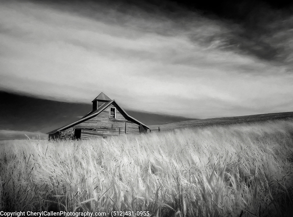 Infrared barn nestled in the wheat fields of the Palouse