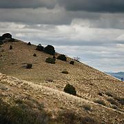 Heather Goodrich rides spring singletrack along a ridgeline in Pocatello Idaho.
