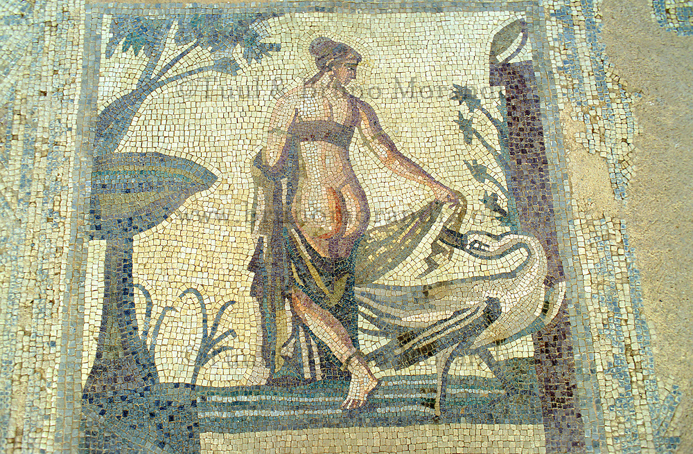 Chypre, Palea Paphos, sanctuaire d'Aphrodite, mosaic // Aphrodite sanctuary, Mosaic, Palea Paphos, Cyprus