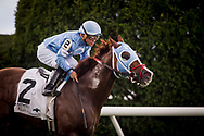 LEXINGTON, KY - OCTOBER 07: Bucchero #2, ridden by Fernando De La Cruz wins the Woodford Presented by Keeneland Select Stakes at Keeneland Race Course on October 07, 2017 in Lexington, Kentucky. (Photo by Alex Evers/Eclipse Sportswire/Getty Images)