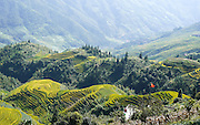 China, Guilin landscape with Ping An Rice Terraces