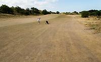 ZANDVOORT  - bruine droge fairways  van de Kennemer G &CC, hole A7, omdat de fairways niet gesproeid worden.  COPYRIGHT  KOEN SUYK