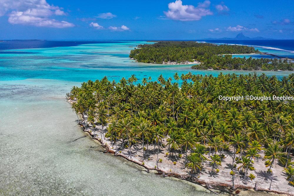 Motu, Tahaa, Society Islands, French Polynesia; South Pacific