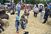 Nederland, Wijchen, 11-10-2014Paardenmarkt en boerenmarkt in Wijchen. Kinderen konden knuffelen met klein vee zoals geiten en konijnen.FOTO: FLIP FRANSSEN/ HOLLANDSE HOOGTE