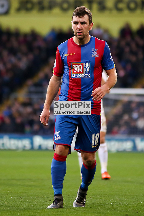 James McArthur of Crystal Palace During Crystal Palace vs Swansea on Monday the 28th December 2015.