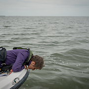 FLORIDA CITY, FLORIDA - APRIL 22, 2016<br /> Sally Jewell, United States Secretary of the interior, looks at grass that was floating in the waters of the Everglades National Park  during a trip to look at dying sea grass.<br /> (Photo by Angel Valentin)