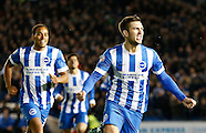 Brighton and Hove Albion v Wigan Athletic 04/11/2014