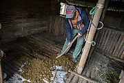 Farmer collects horse dung to be used as organic fertilizer in Cemoro Lawang village, Probolinggo, East Java, 2017.