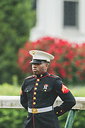 May 4, 2019: 145th Kentucky Derby at Churchill Downs. US Marine stands guard at the finish line.