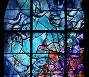 Birds in flight, from the right lancet window of the 'Les Grandes Heures de Reims' stained glass window, 1974, by Marc Chagall, 1887-1985, with the studio of Jacques Simon, in the axial chapel of the apse of the Cathedrale Notre-Dame de Reims or Reims Cathedral, Reims, Champagne-Ardenne, France. The cathedral was built 1211-75 in French Gothic style with work continuing into the 14th century, and was listed as a UNESCO World Heritage Site in 1991. Picture by Manuel Cohen