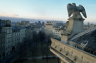 France. paris. Napoleon eagles. on the roof of the justice  court view from trade court
