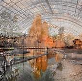 New_Zoo