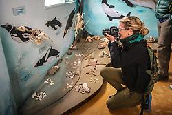 Fotógrafo no Museo Acatushún -um museu de aves e mamíferos do extremo sul inaugurado em 10 de março de 2001e está localizado na Estância Harberton na beira do Canal de Beagle. FOTO: Jefferson Bernardes/ Agência Preview