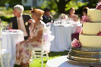 Wedding Party in Garden