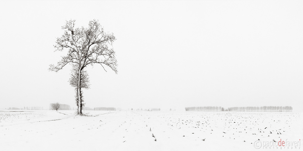 The last snowfall of winter 2010 in the countryside nearby Castagnole in Piedmont, Italy. Snow on the ground, mist in the middle and grey overcast sky above: just the perfect conditions for highly graphical and minimalist photos such as this one, with the high key look simply obtained by pushing the highlights almost to the limit of pure white. This is stitched from six vertical frames.